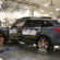 Which is the Safest Subaru: Outback, Legacy, or Forester? IIHS Driver Death Rates (2017)