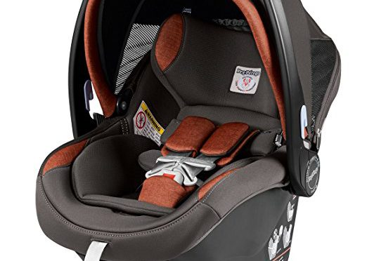 peg perego primo viaggio nido car seat review 4 35 pounds 17 inches wide 11 pounds the car. Black Bedroom Furniture Sets. Home Design Ideas